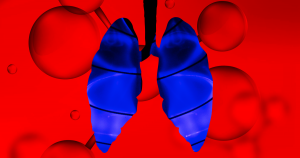 A lung-like design created by researchers at Stanford University has the potential to increase the efficiency of hydrogen fuel cells.