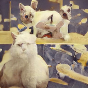 A New AI Draws Cats, and They're Utterly Grotesque