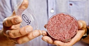 The benefits of lab-grown meat will depend on scientists' ability to produce it sustainably, and right now, we don't know if that's even possible.