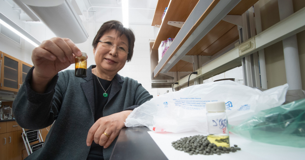New chemistry technique turns waste plastic into clean fuel