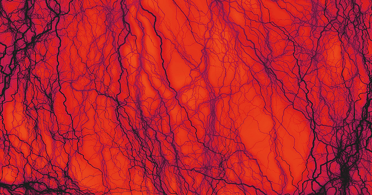 Scientists Grew Artificial Blood Vessels from Cadaver Cells