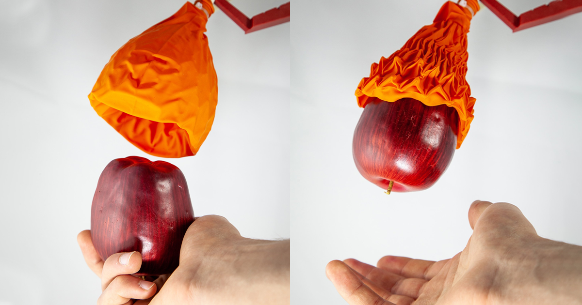 New Robot Hand Works Like a Venus Flytrap to Grip Objects