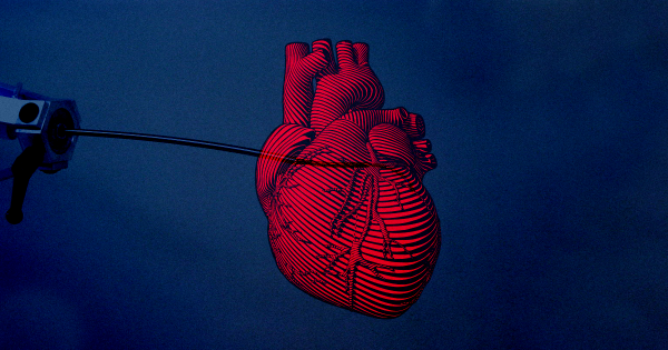 Surgeons just sent a tiny, autonomous bot into a heart valve