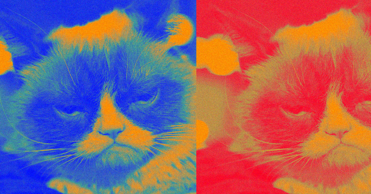 Grumpy Cat Is Dead. We Have the Technology to Clone Her.
