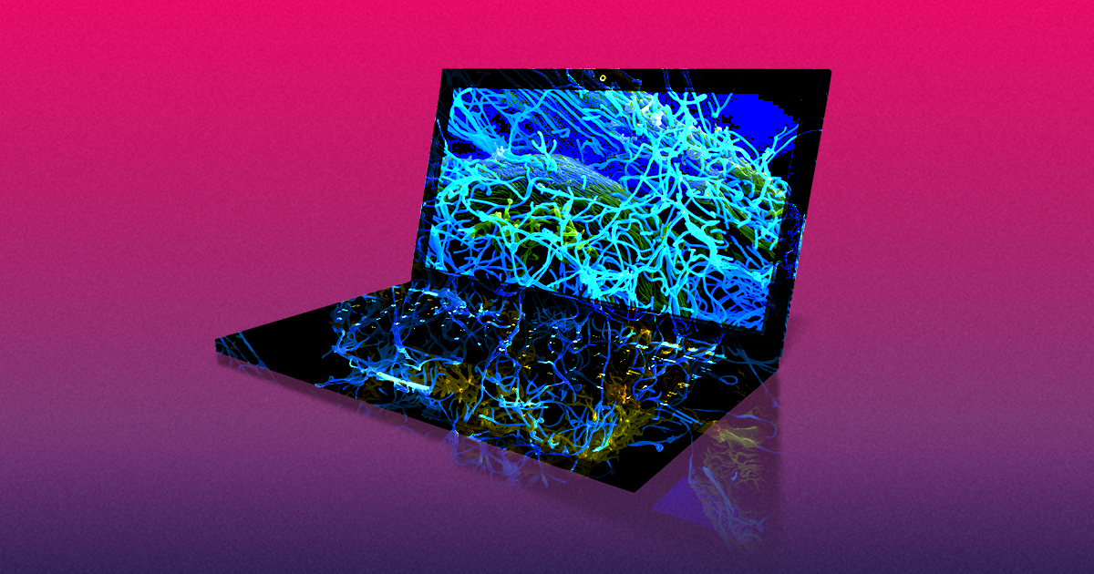 This Dude Is Selling a Virus-Infested Laptop For $1.2 Million