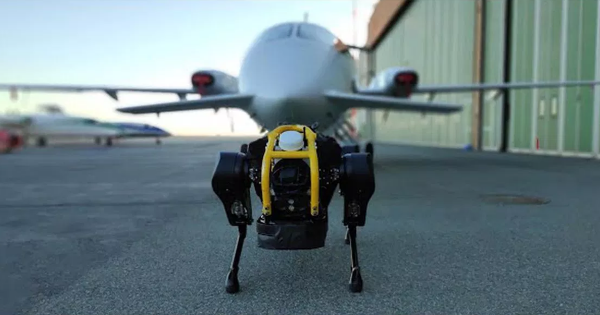 Watch a Super-Strong Robot Dog Pull a Three-Ton Airplane