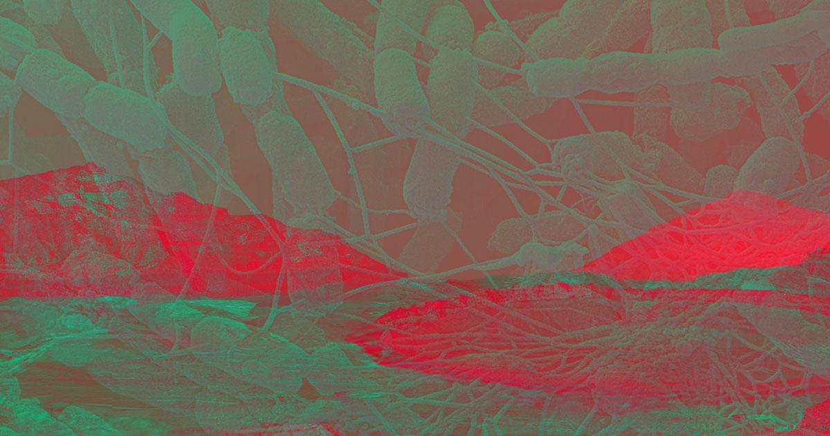 Resultado de imagem para colonizing mars with microbes
