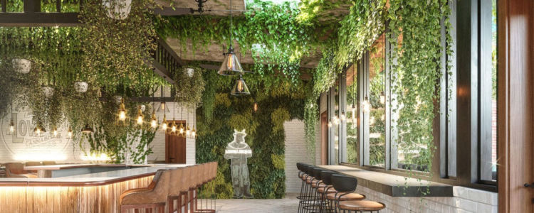 America's First Cannabis Cafe Is Open for Business