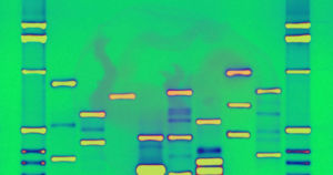 A company called Genomic Prediction offers report cards based on the DNA test of frozen embryos. Experts say it's reminiscent of eugenics.