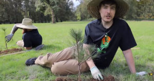Team Trees, a tree-planting campaign backed by Tesla CEO Elon Musk, has officially met its fundraising goal of $20 million.