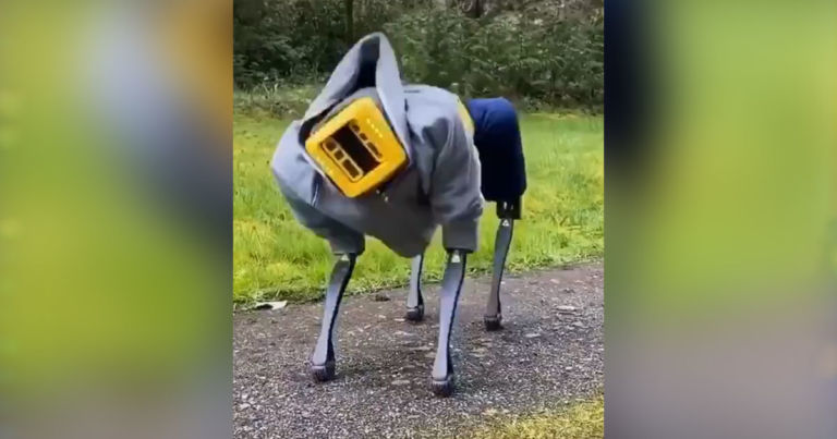 Watch a robodog twerk in a baggy hoodie and basketball shorts
