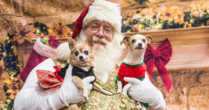 """""""Santa is exempt from this because Santa, of all the good qualities, has a lot of good innate immunity,"""" infectious disease expert Anthony Fauci said."""