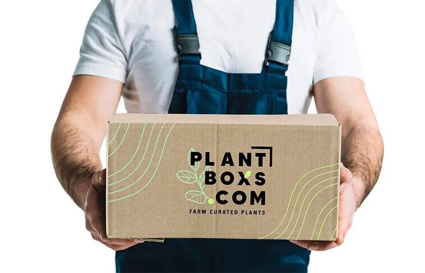 plantboxs.com