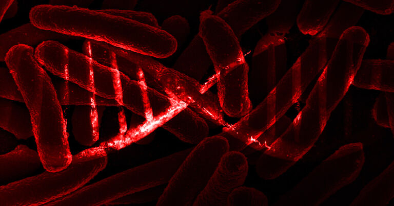 Scientists Successfully Store Data Inside DNA of Living Bacteria