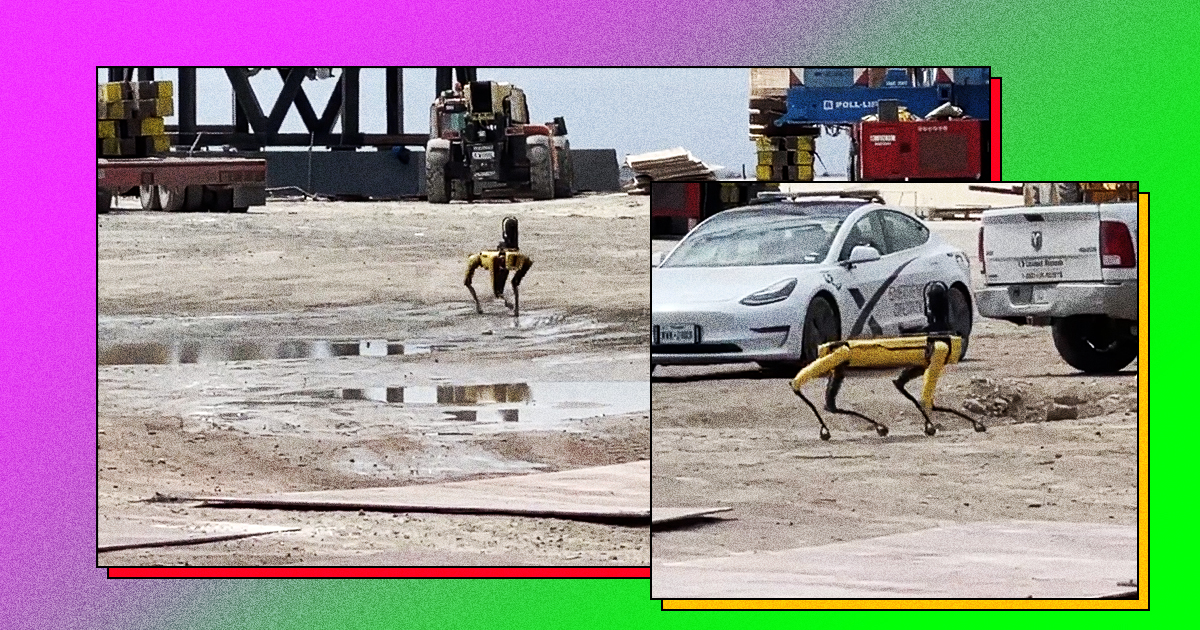 There's a Robodog Walking Around the Site of the SpaceX Starship Explosion