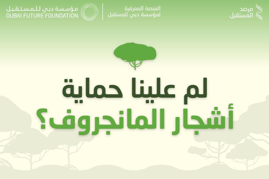 لم علينا حماية أشجار المانجروف؟